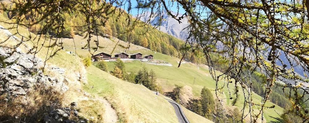 der Herbst - Südtirol von seiner schönsten Seite